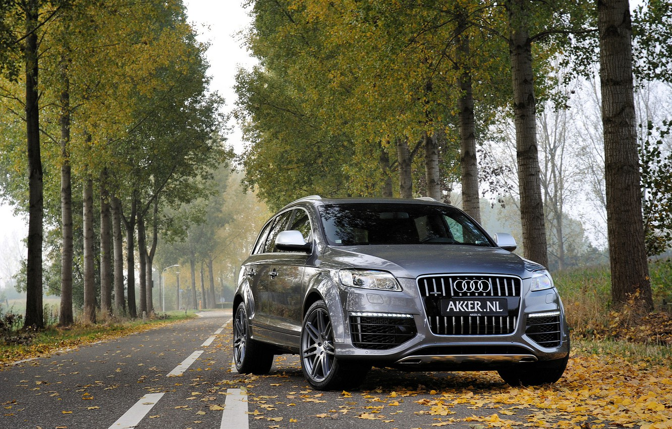 Photo wallpaper autumn, forest, leaves, trees, grey, Audi, Audi, jeep, metallic, grey, jeep, metallic