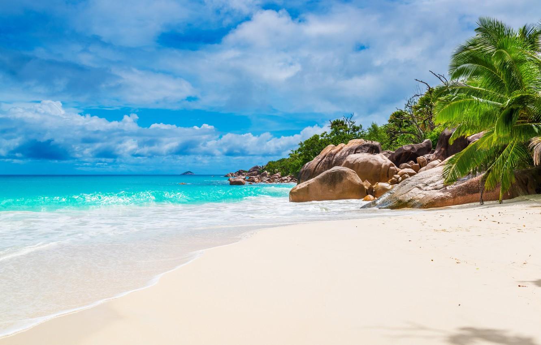 Photo wallpaper sand, sea, beach, shore, summer, beach, sea, sand, shore, paradise, palms, tropical