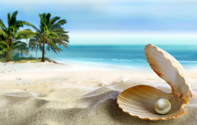 Photo wallpaper sand, sea, beach, the sun, tropics, the ocean, shell, summer, beach, sea, ocean, coast, blue, …