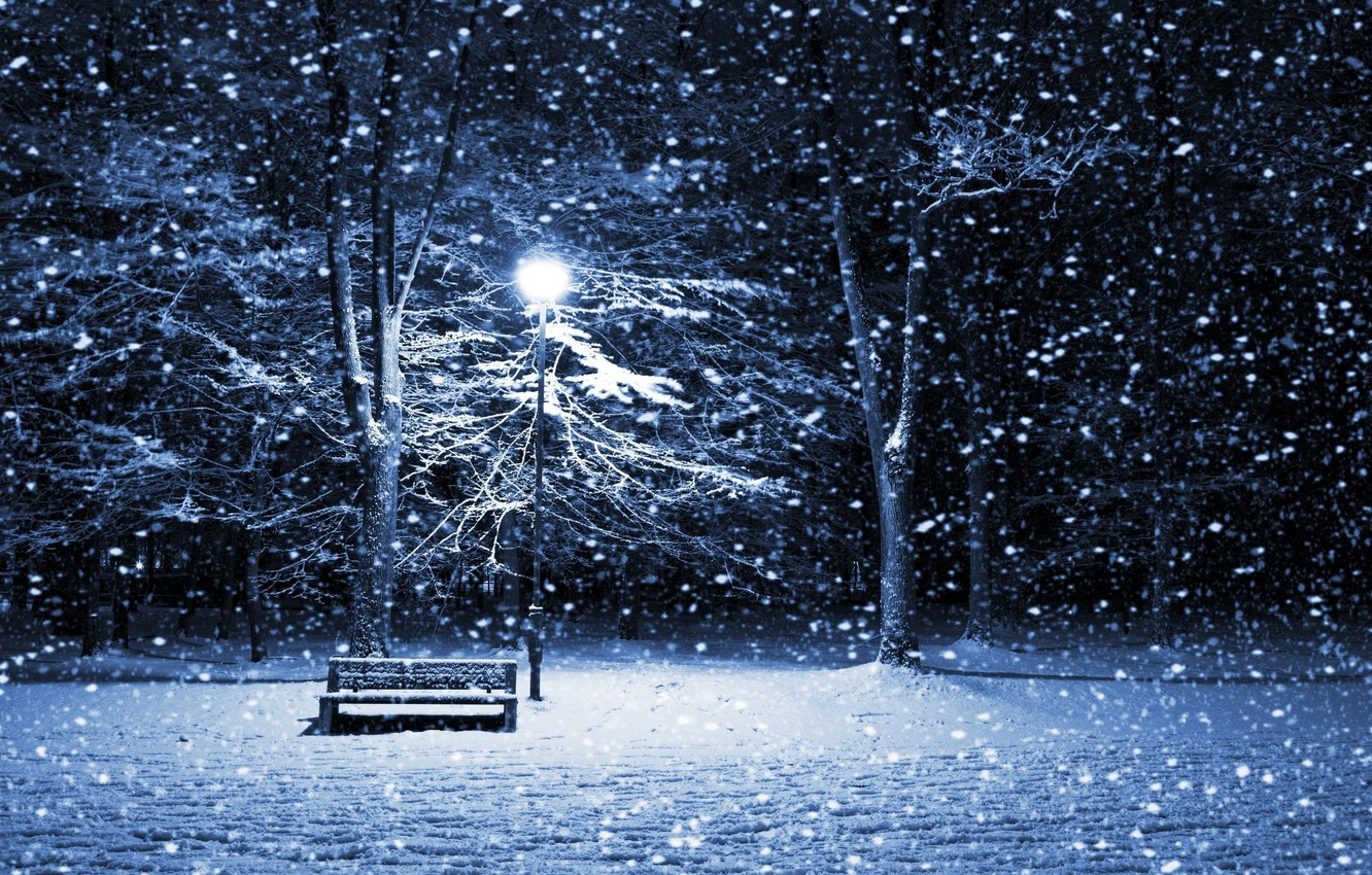 Photo wallpaper winter, frost, light, snow, trees, branches, the evening, shop, lantern