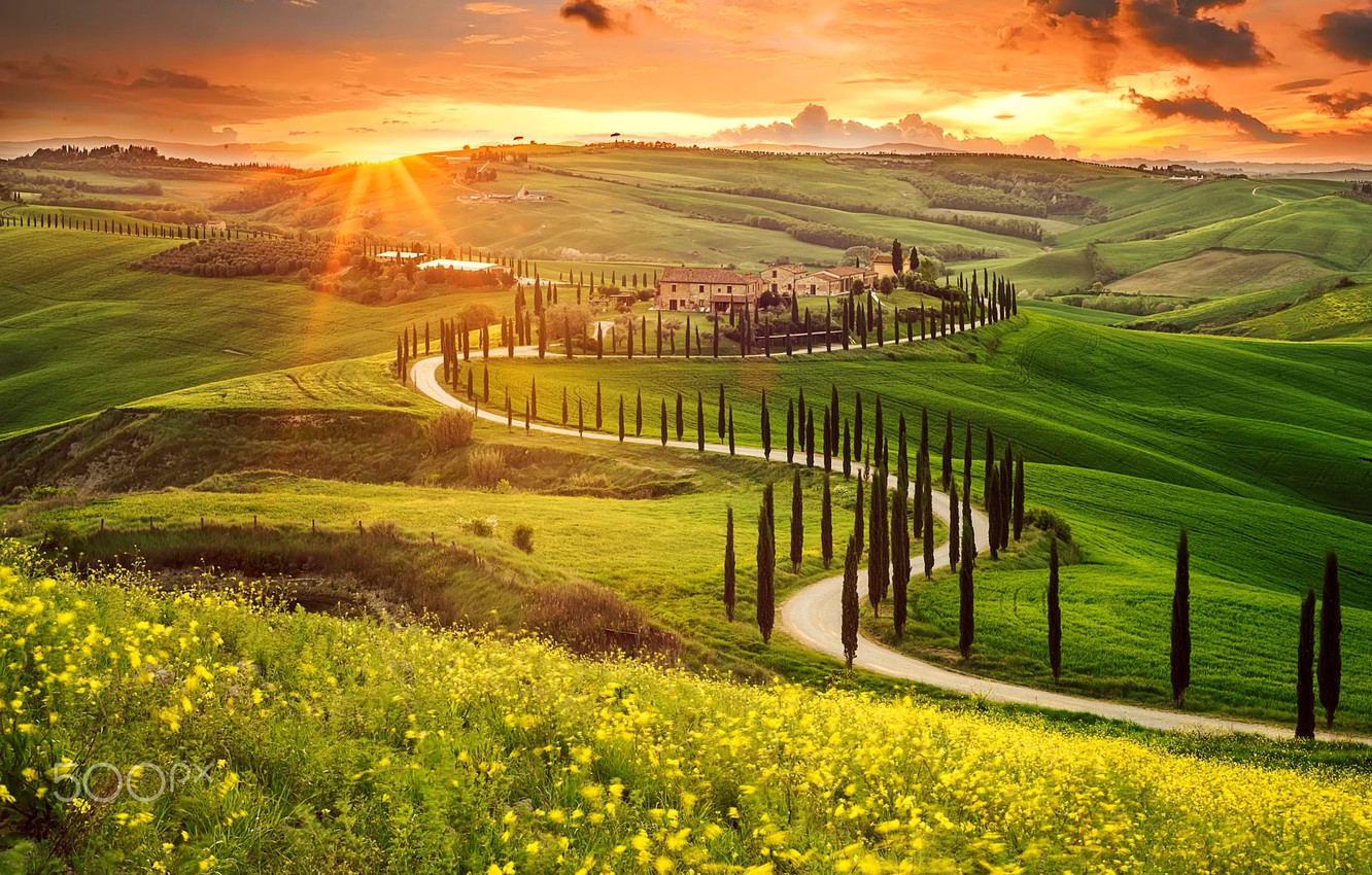 Wallpaper the sun, valley, Italy, Tuscany, derevya images ...