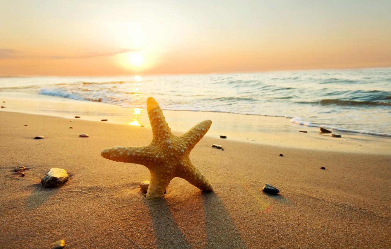 Photo wallpaper sea, beach, summer, the sky, clouds, sunset, nature, beach, sea, ocean, sunset, sun, sand, starfish