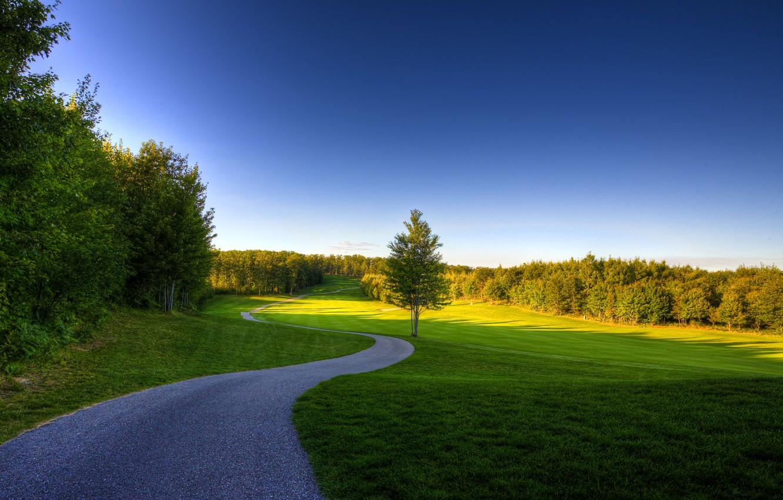 Photo wallpaper summer, the sky, grass, trees, nature