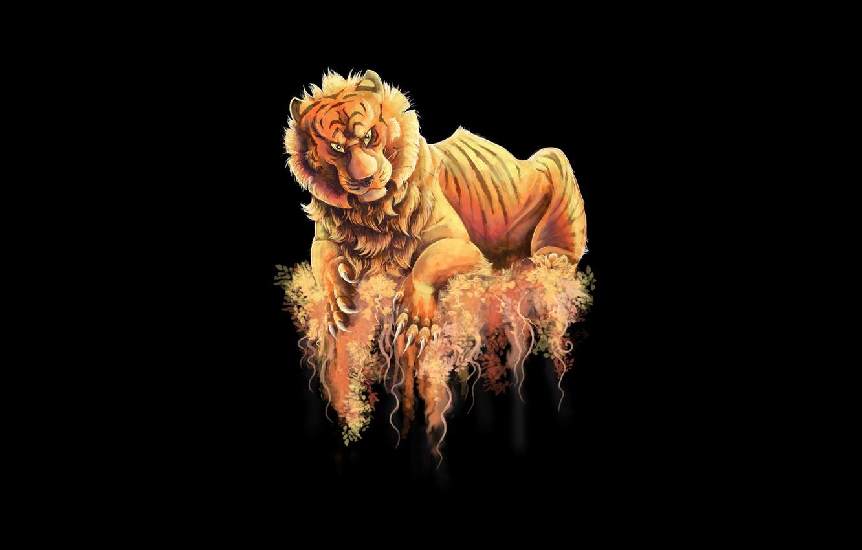 Photo wallpaper tiger, the dark background, predator, tiger