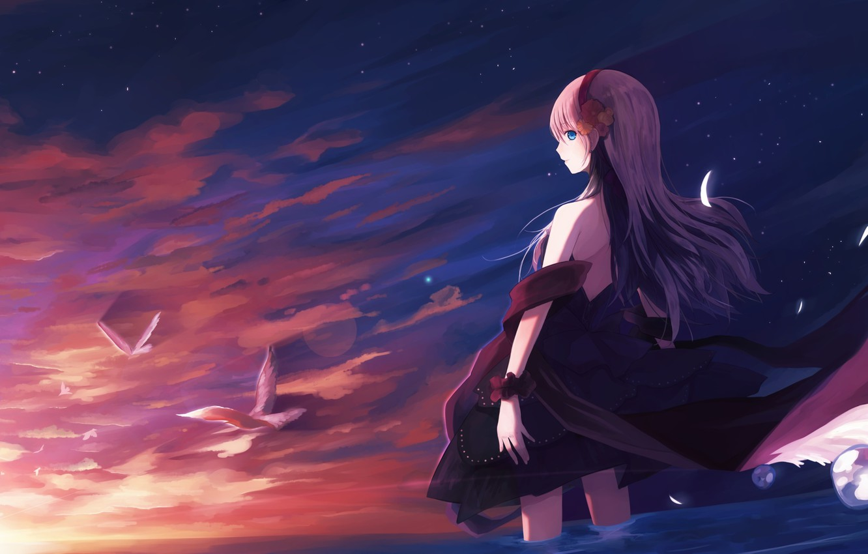 Photo wallpaper the sky, girl, the sun, clouds, sunset, birds, anime, art
