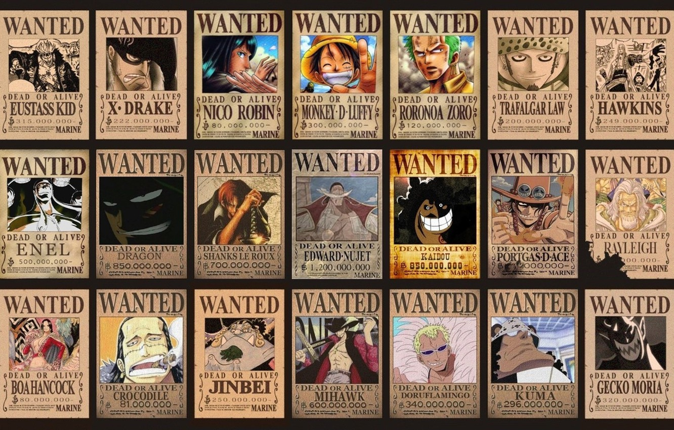 Wallpaper Dragon Wanted One Piece Robin Pirates Monkey D Luffy