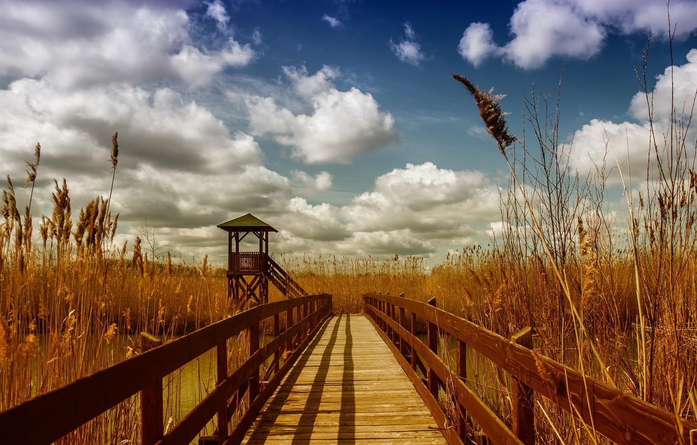 Photo wallpaper the sky, clouds, bridge, river, spring, ears, gazebo