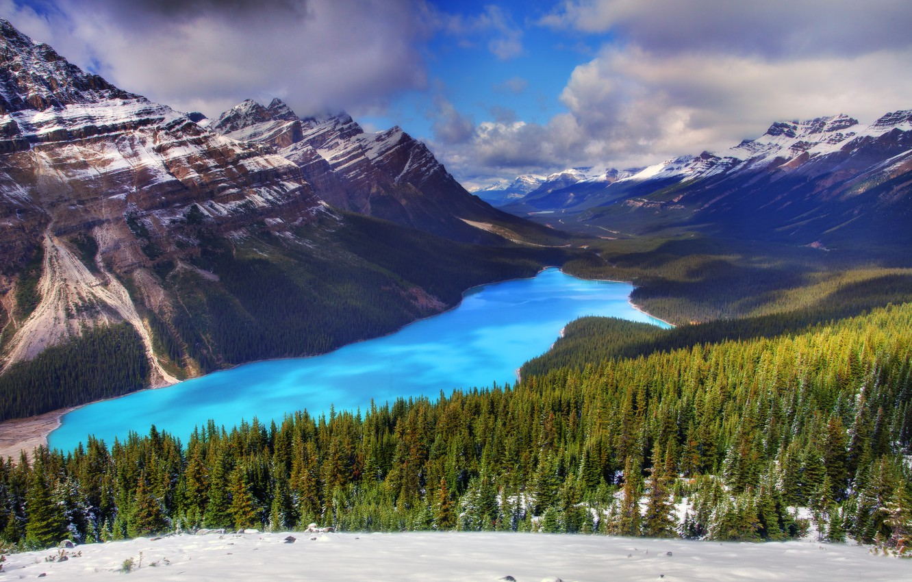 Photo wallpaper winter, forest, snow, trees, mountains, lake, spruce, Canada, canada, alberta, peyto lake. banff national park