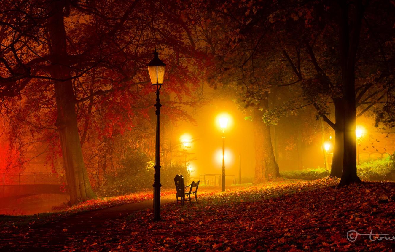 Photo wallpaper autumn, light, trees, bench, night, bridge, Park, twilight, lights