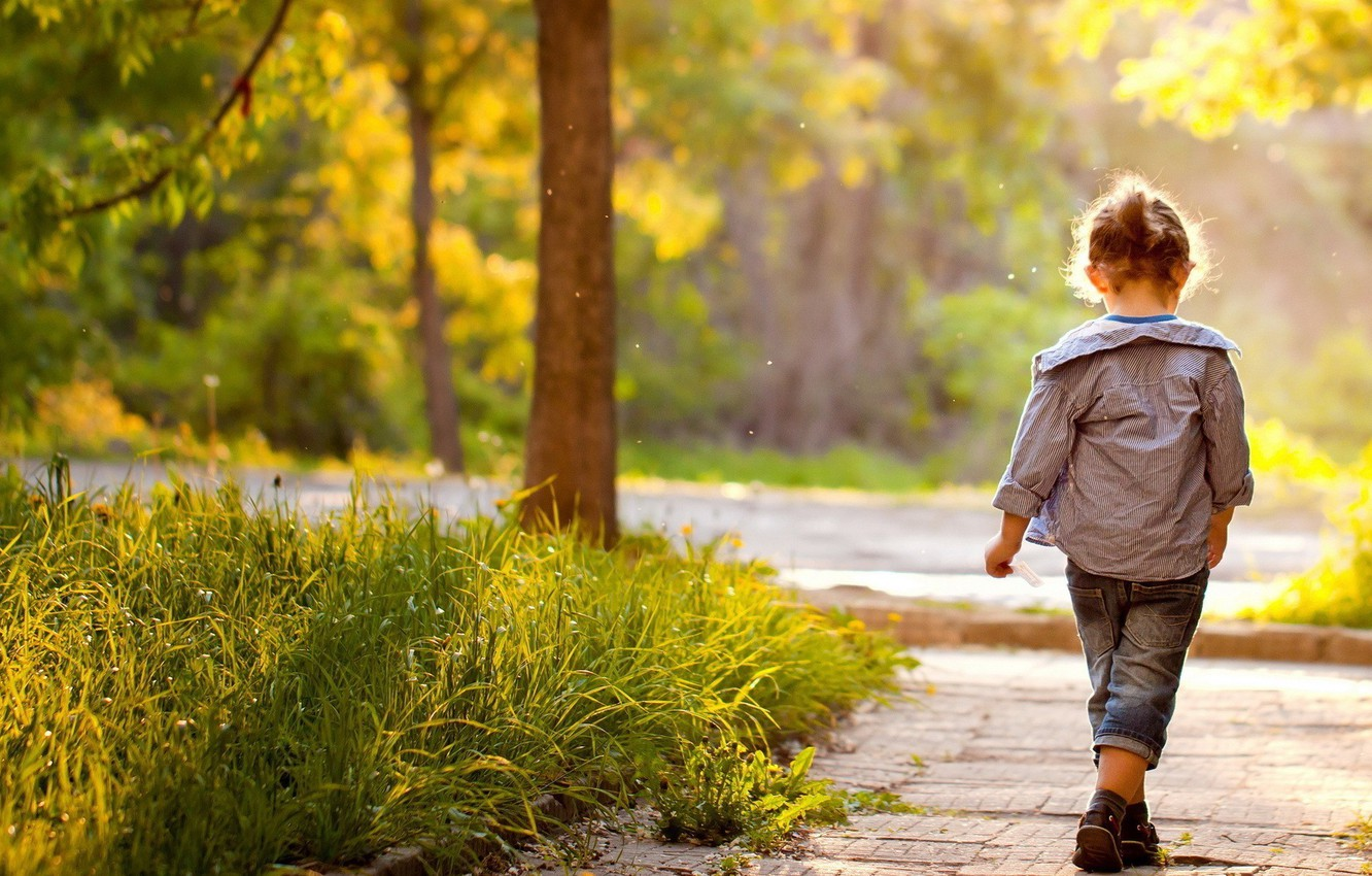 Photo wallpaper greens, grass, leaves, trees, nature, children, Park, background, situation, tree, widescreen, Wallpaper, foliage, child, blur, …