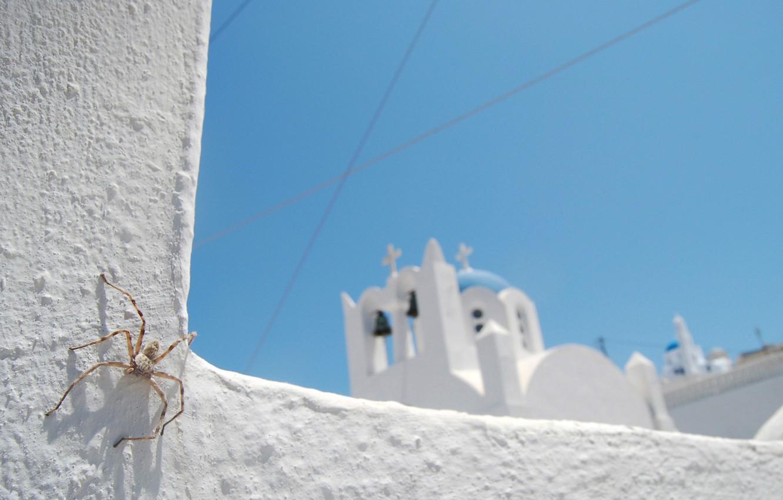Photo wallpaper white, the sky, blue, spider, Church
