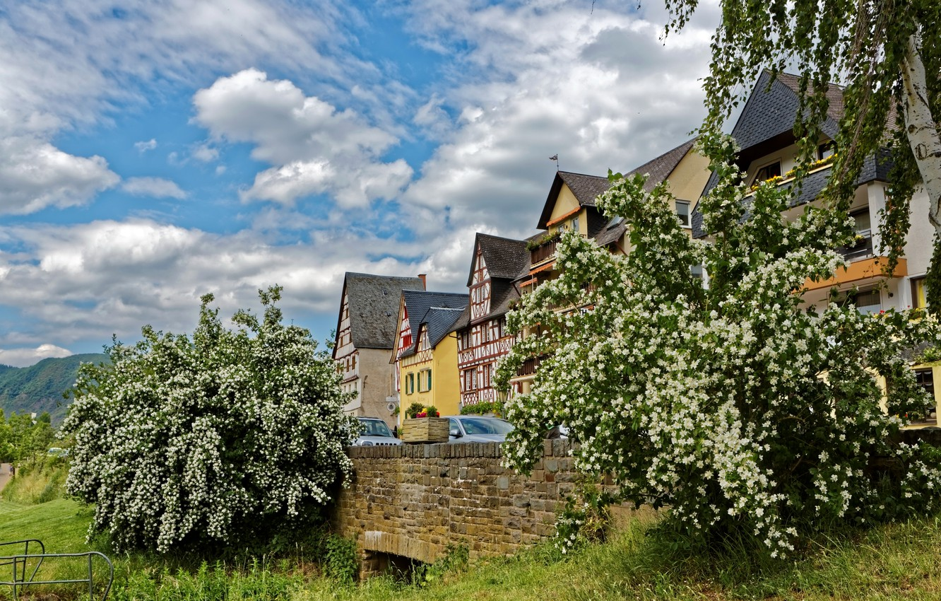 Photo wallpaper the sky, grass, clouds, trees, mountains, home, Germany, bloom, Ediger-Eller