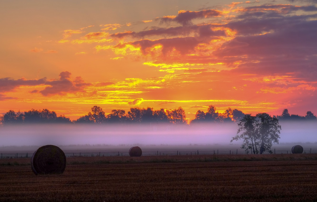 Photo wallpaper field, clouds, trees, sunset, fog, the fence, silhouette, the countryside, farm, hay, yellow sky