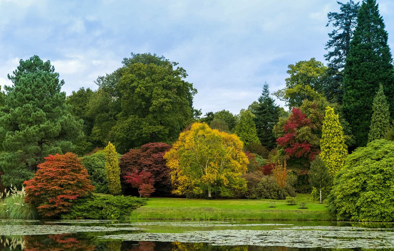 Photo wallpaper autumn, forest, the sky, trees, pond, Park