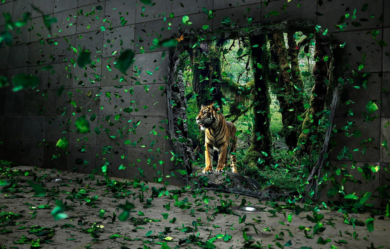 Photo wallpaper leaves, tiger, wall, hole
