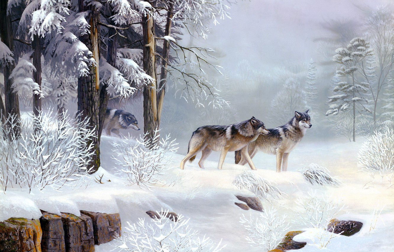 Photo wallpaper cold, winter, forest, animals, morning, wolves, painting, Morning Solitude, Leo Stans, frosty