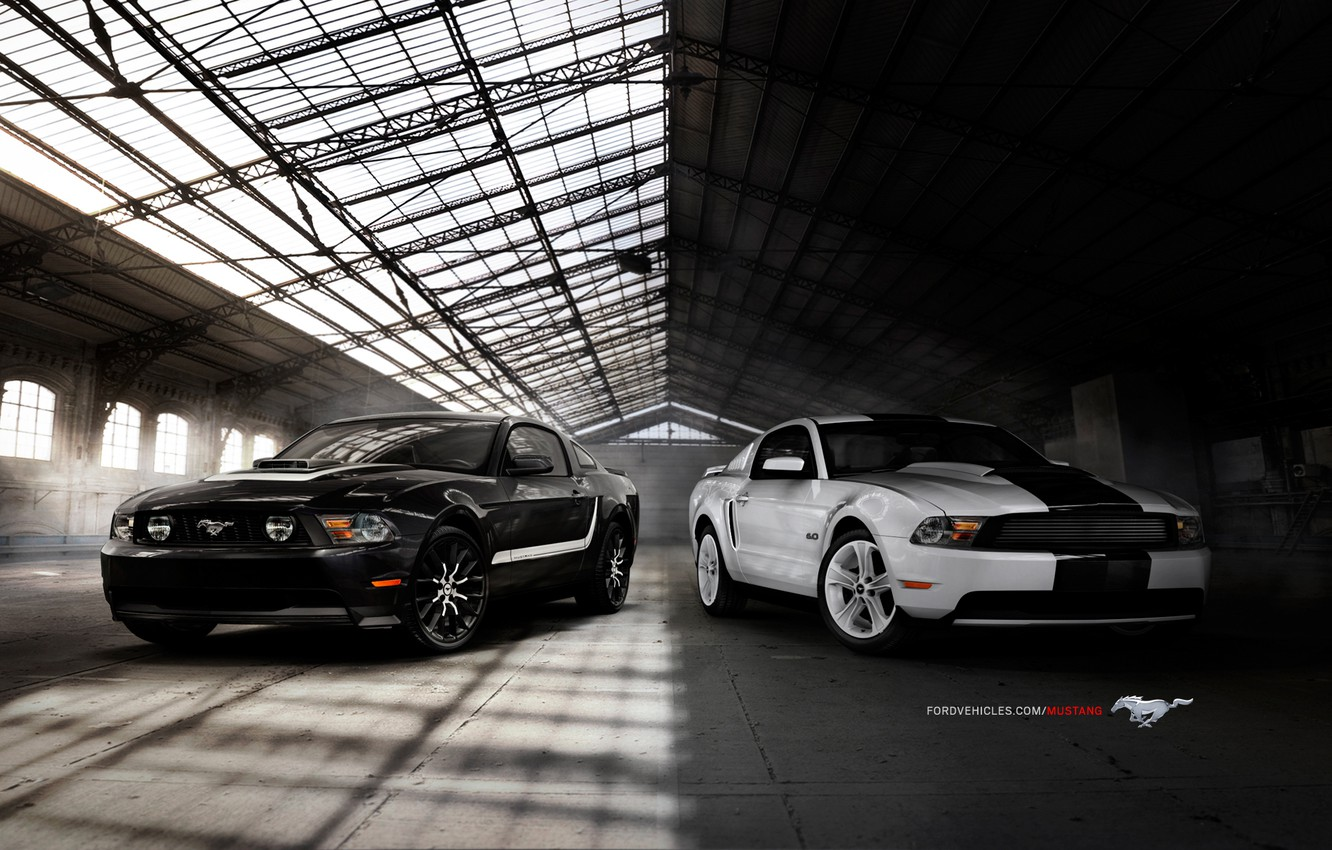 Photo wallpaper mustang, 2010, ford