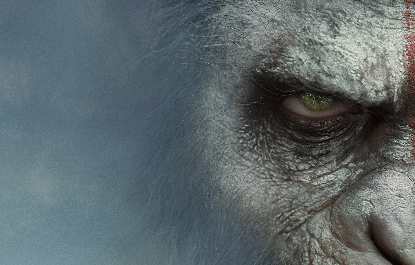 Wallpaper Movie Dawn Of The Planet Of The Apes Dawn Of The