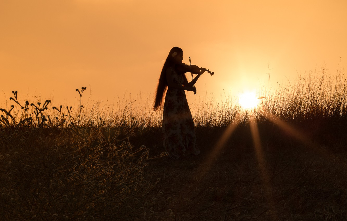 Photo wallpaper field, grass, girl, sunset, mood, violin, the evening, dress, silhouette, the rays of the sun