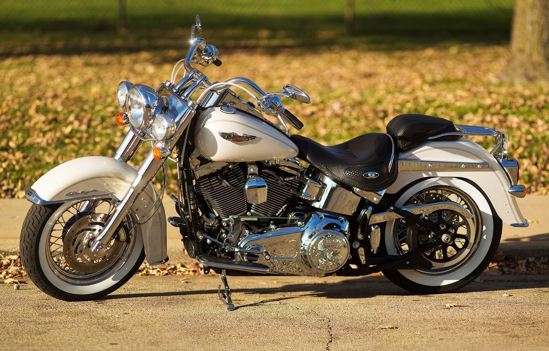 Photo wallpaper design, background, motorcycle, bike, Harley-Davidson