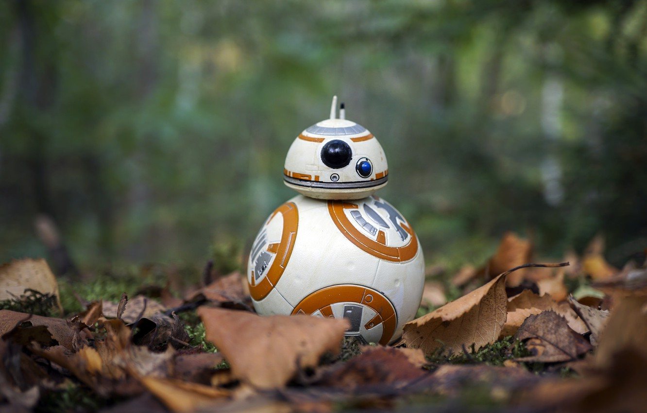 Wallpaper Autumn Star Wars Bb 8 Images For Desktop Section