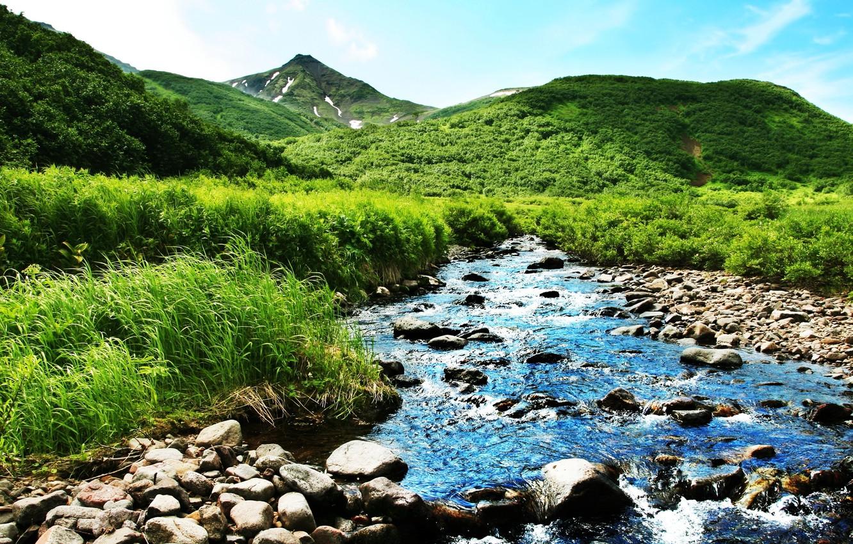 Photo wallpaper greens, summer, mountains, nature, river, stream