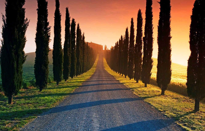 Wallpaper Sunset Road Trees Images For Desktop Section Pejzazhi Download