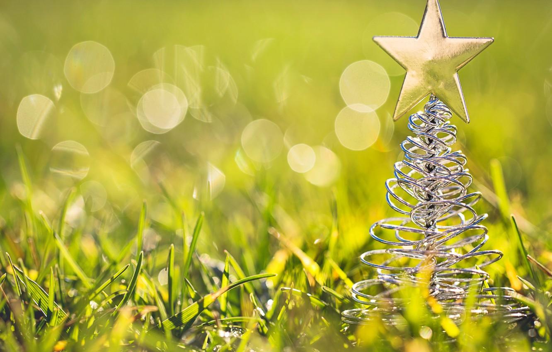 Photo wallpaper grass, macro, toy, star, tree, tree, green, figure, bokeh