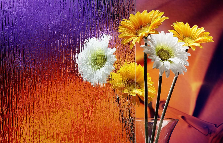 Photo wallpaper glass, Flowers, vase, gerbera