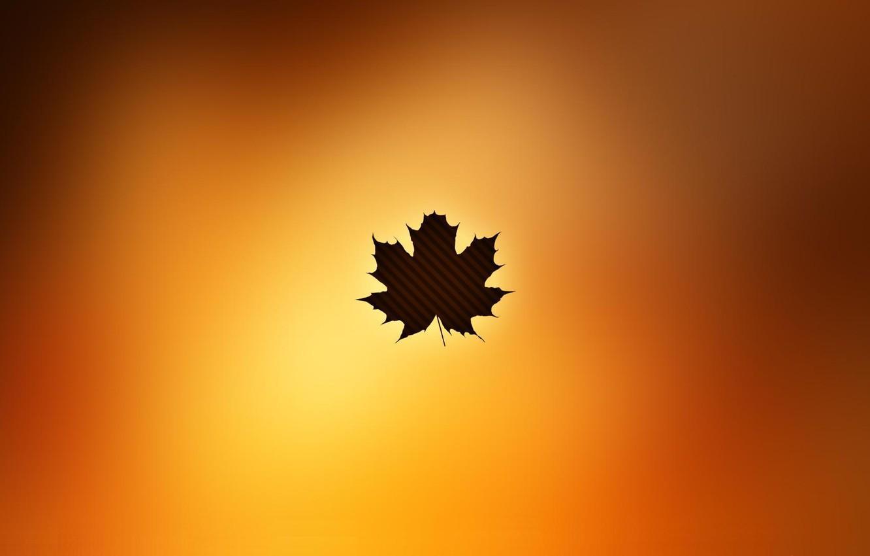 Photo wallpaper sheet, maple, minimalism