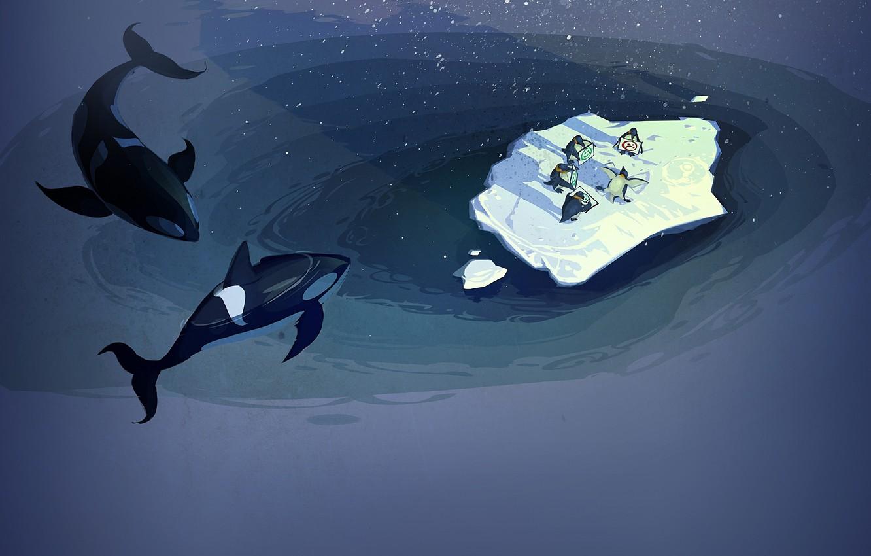 Photo wallpaper the ocean, penguins, floe, steam, orca