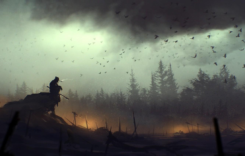 Photo wallpaper birds, clouds, fire, art, death, battlefield, lonely