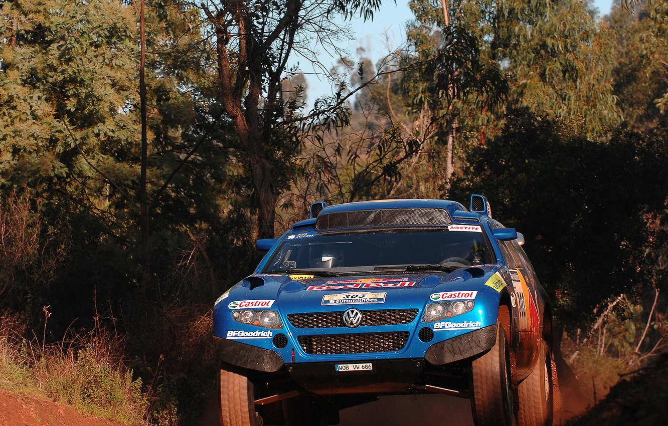 Photo wallpaper thickets, Volkswagen, Touareg Race