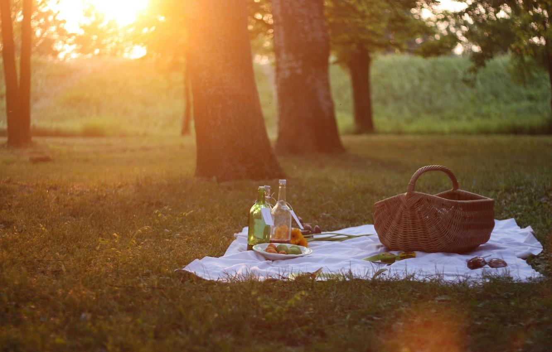Photo wallpaper summer, grass, sunshine, flower, trees, nature, park, sun, orange, picnic, bottle, sunny