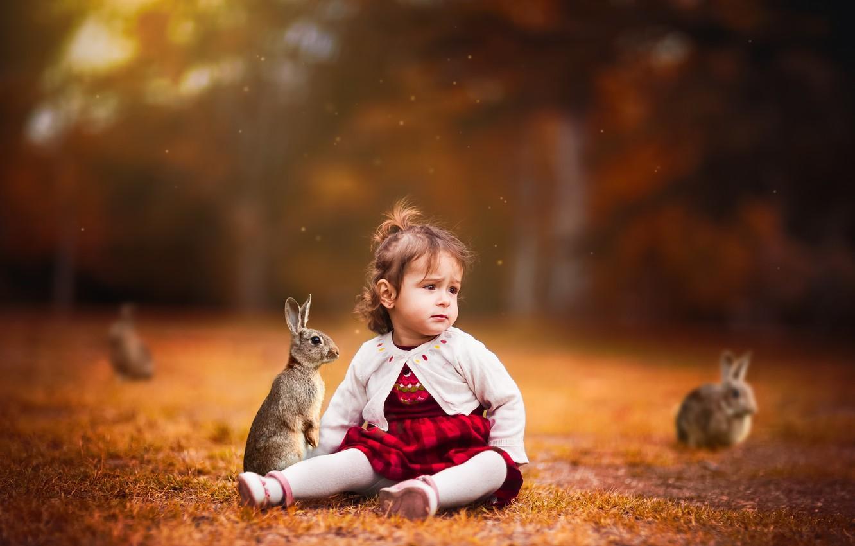Photo wallpaper background, girl, rabbits