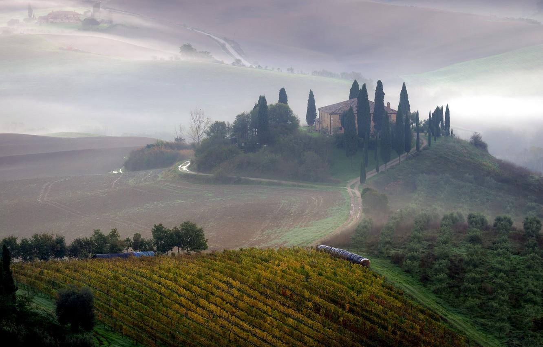 Photo wallpaper field, landscape, fog, morning, Tuscany