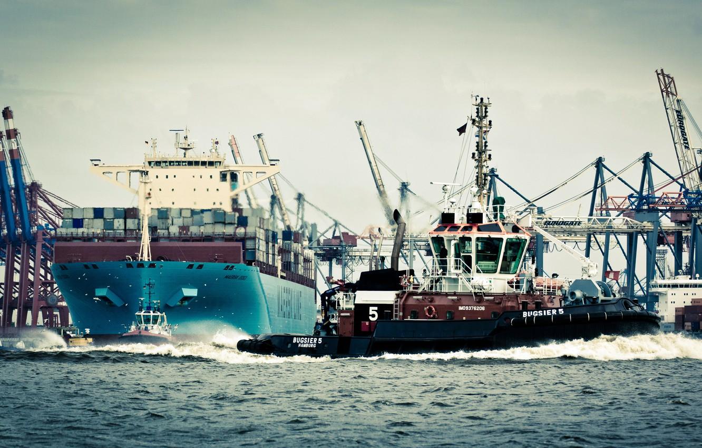 Photo wallpaper Water, Sea, Port, Germany, Board, Birds, Case, The ship, Seagulls, Hamburg, A container ship, Cranes, …