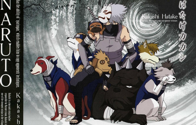 Photo wallpaper dogs, katana, mask, Naruto, bandages, ninja, sensei, Kakashi Hatake, Pakkun, Naruto shippuuden, ANBU