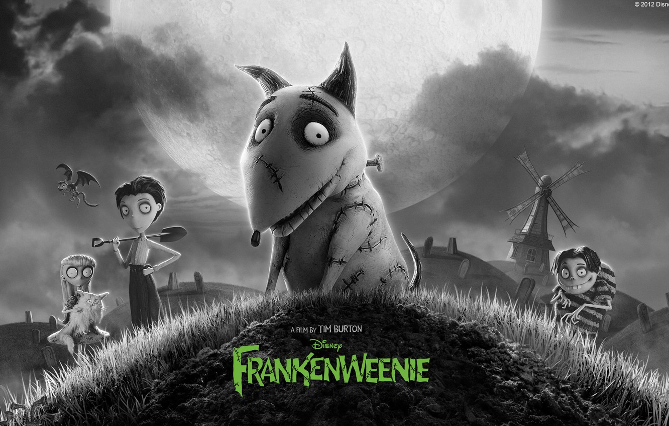 Wallpaper Cartoon Dog Disney 2012 Dog Frankenweenie Frankenweenie Tim Burton Images For Desktop Section Filmy Download