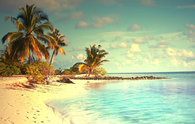 Photo wallpaper sand, sea, beach, tropics, palm trees, shore, summer, sunshine, beach, sea, ocean, paradise, vacation, palms, ...