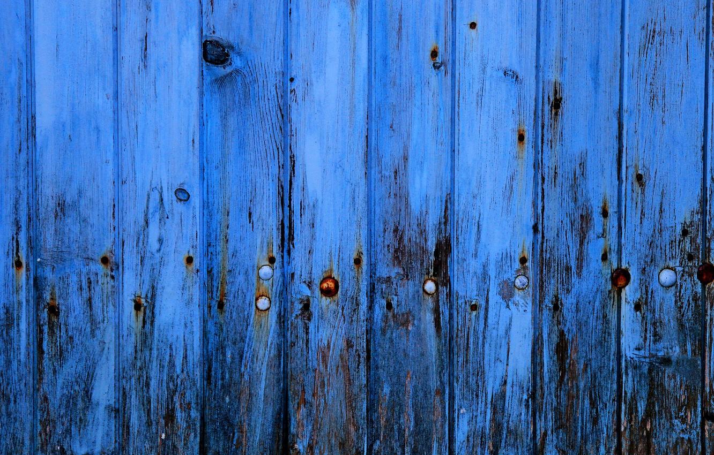 Photo wallpaper surface, tree, paint, texture