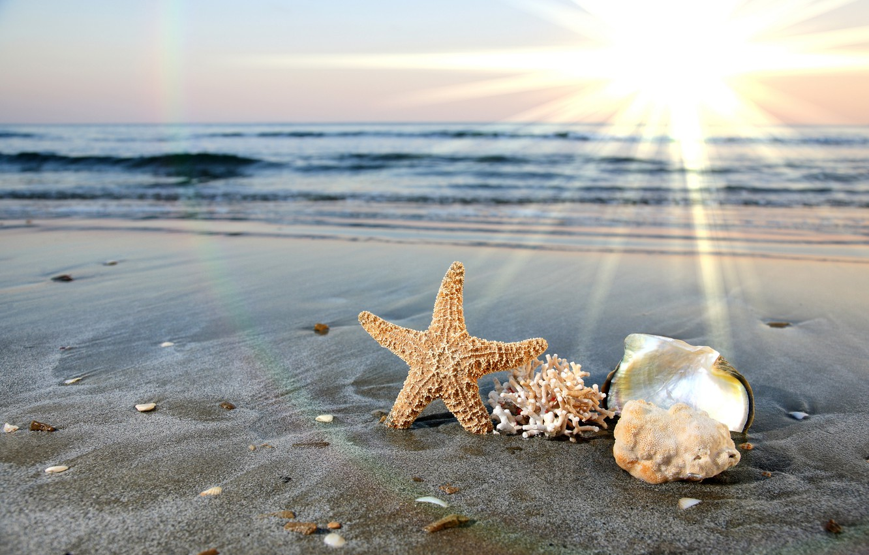 Photo wallpaper sand, sea, wave, beach, the sky, water, clouds, the ocean, shore, horizon, surf, shell, starfish