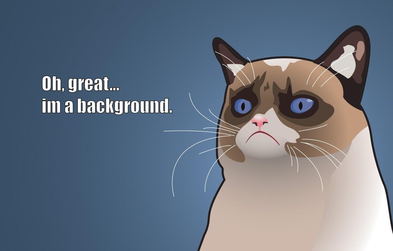 Photo wallpaper Vector, Cats, Grumpy, Captions