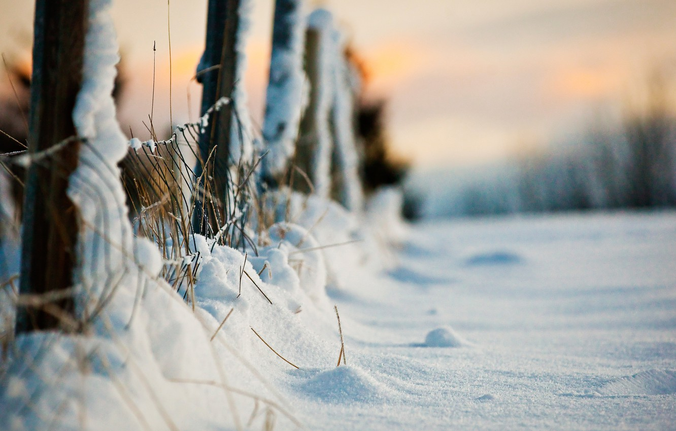 Photo wallpaper winter, macro, snow, the fence, the evening