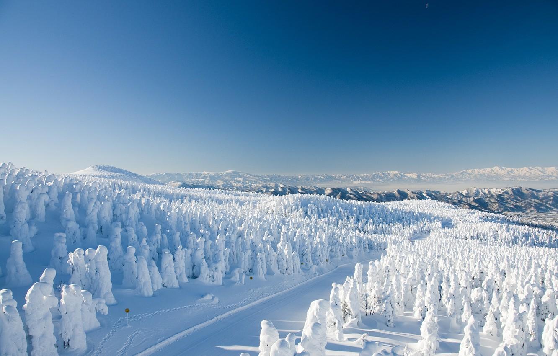 Photo wallpaper winter, road, forest, snow, trees, mountains, Japan, Japan, Yamagata, Yamagata, Yamagata Zao Onsen Ski Resort