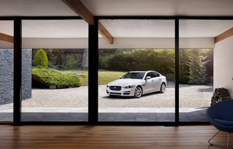 Photo wallpaper jaguar, portfolio
