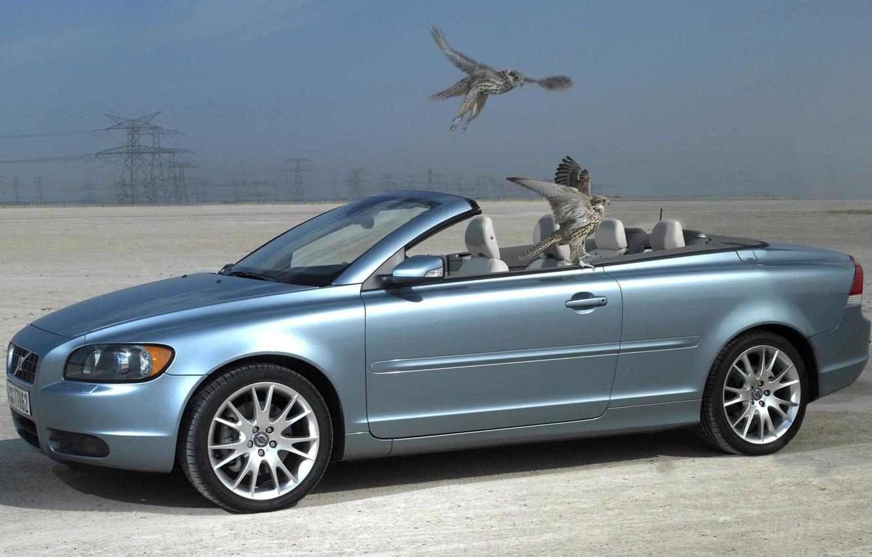 Photo wallpaper bird, Volvo, convertible, C70
