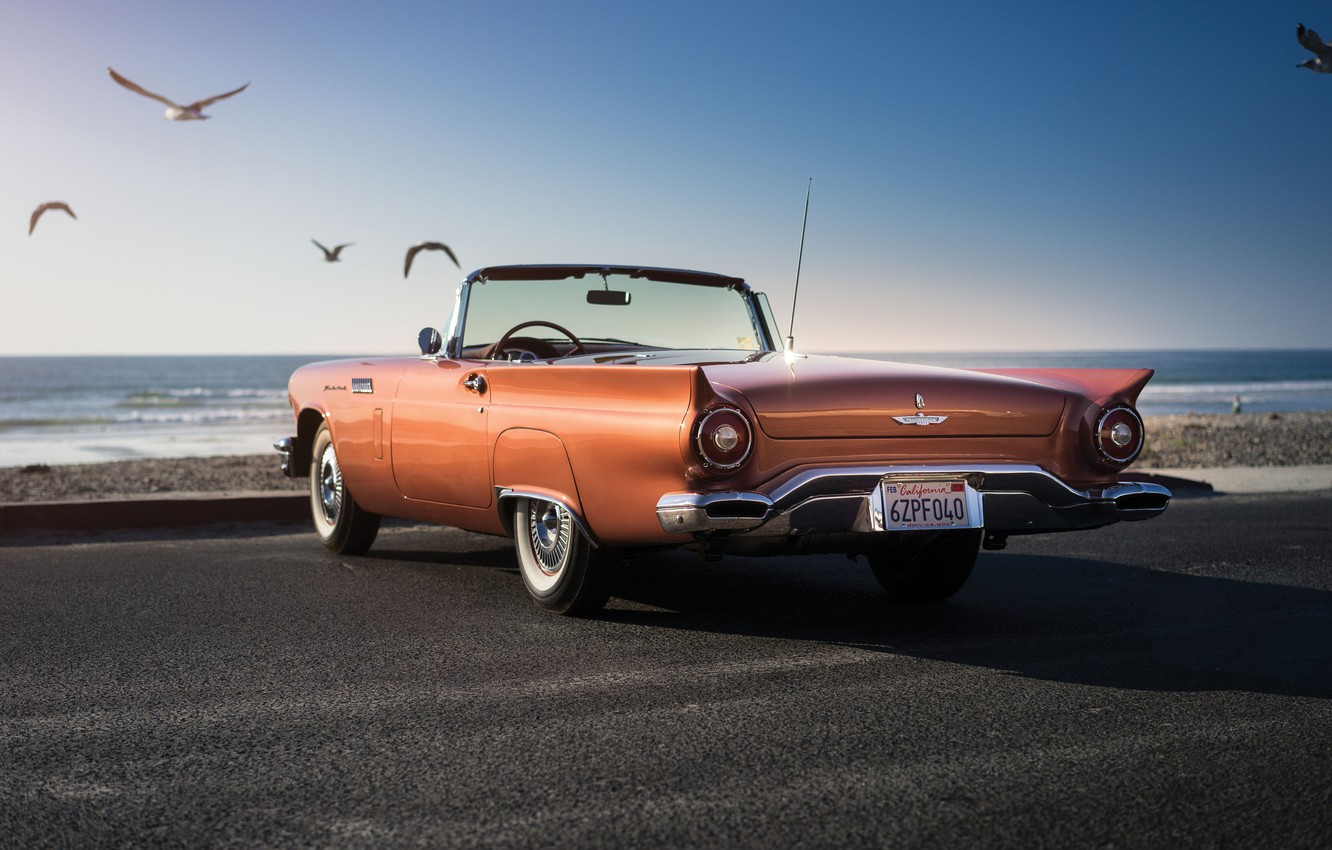 Photo wallpaper seagulls, Ford, Ford, classic, Special, 1957, Supercharged, Thunderbird, T-Bird
