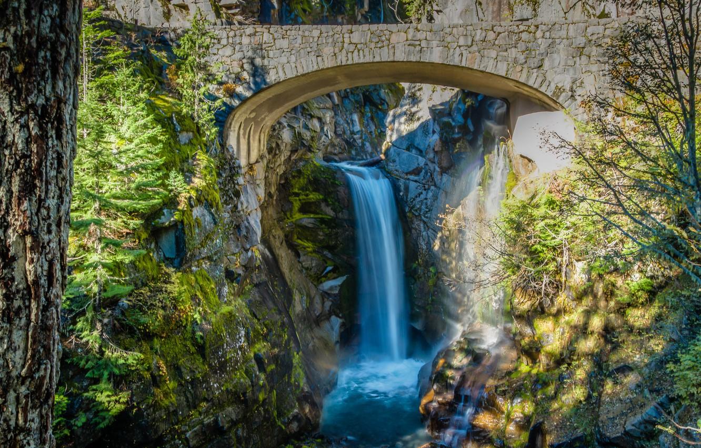 Photo wallpaper trees, bridge, stones, waterfall, stream, Washington, USA, the bushes, Mount Rainier National Park, Christine Falls