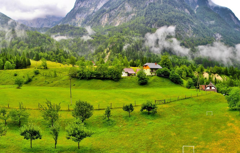 Photo wallpaper forest, grass, clouds, trees, mountains, home, Slovenia, Slovenia, Poliana.